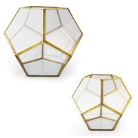 Pentagonal Honeycomb Hand Made Terrarium Made with a Brass Frame and Glass Walls