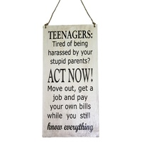 40cm x 20cm Funny Quote For Teenagers, Sassy, Quirky Wooden Hanging Sign
