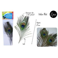 2pce 25cm Peacock Feather Great for decoration or art and craft