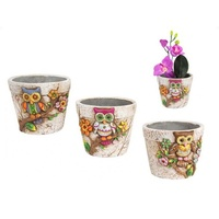 12cm Cute Owl Garden Herb Plant Pots Complete Story of 3pce