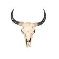 44cm Resin Artificial Cow Skull Wall Hanging Realistic