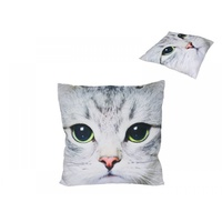 40cm x 40cm Soft Pollyester Cat Cushion (Design on One Side Only)Decorative