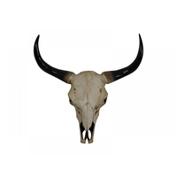 64cm Resin Artificial Cow Skull Wall Hanging Realistic