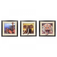 1x 40x40cm 5D Animal Picture Frame, Animal moves out of the Frame