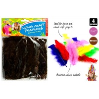 4g of 15cm Long Craft Feathers for Scrapbooking and Arts / Crafts