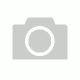 1pce 20cm Dream Catcher with White Web and Turquoise Feathers