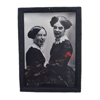Vampire Sisters 48cm Framed 3D Vintage Horror Scary Print Illusion Technology