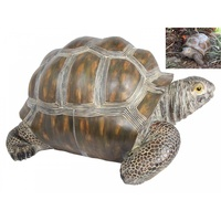 60cm Realistic Tortoise Statue for Garden or Home