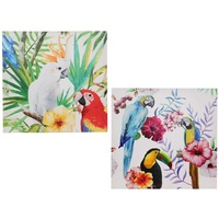 New 1pce 50x50cm South American Bird Canvas Print with Parrots Flowers