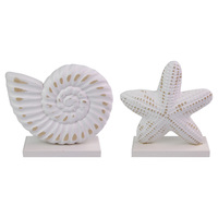 19cm Sea Snail or Starfish White Wood Shell Décor Shabby Chic Beach Themed Table