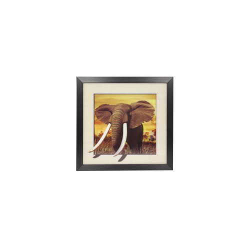 1x 40x40cm 5D Animal Picture Frame, Elephant moves out of the Frame